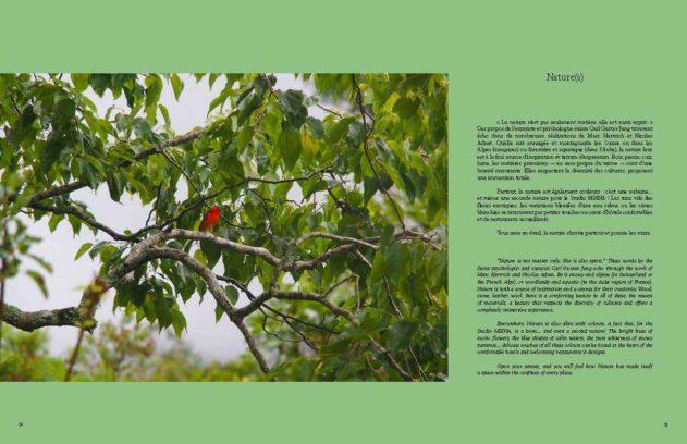 Pages de 2020 05 14 MHNA 2 V15 credits ok 5