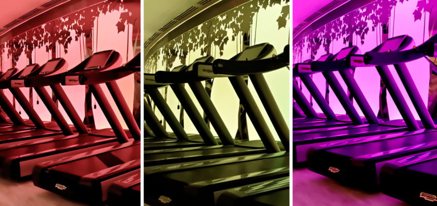Pure Club Med Gym 03